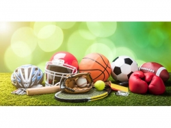 Youth Sports Franchise, Los Angeles County